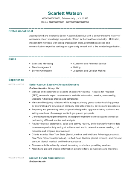 Senior Account Executive resume format New York