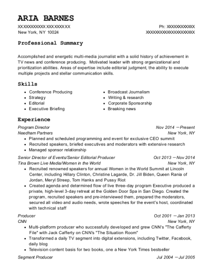 Program Director resume example New York