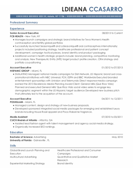 Senior Account Executive resume example New York