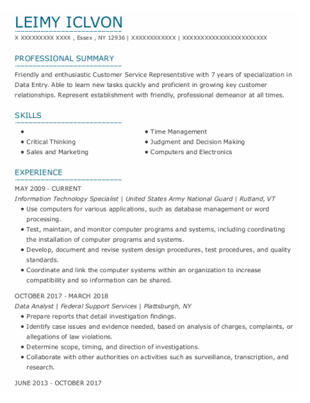 Information Technology Specialist resume format New York