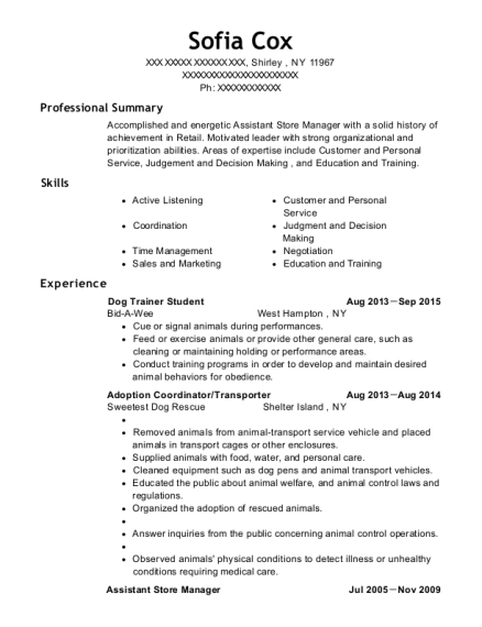 Dog Trainer Student resume sample New York