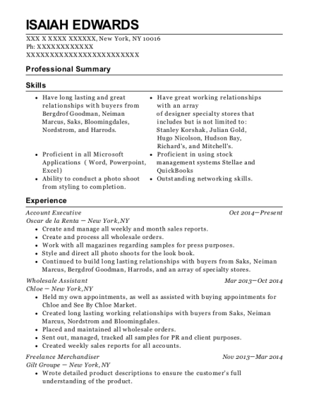 Account Executive resume sample New York