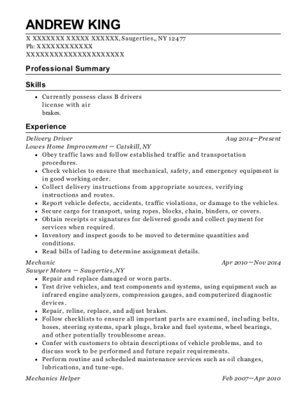 Delivery Driver resume example New York
