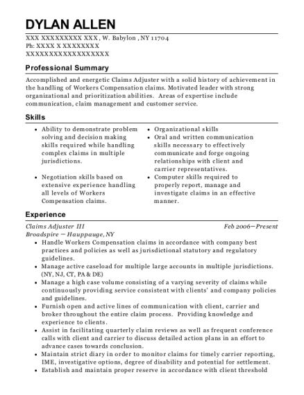 Claims Adjuster III resume format New York