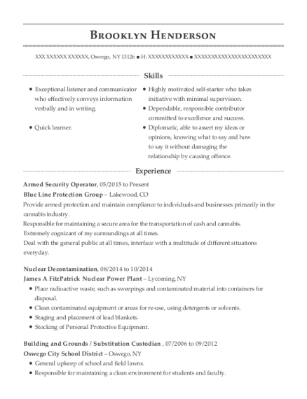 Armed Security Operator resume example New York