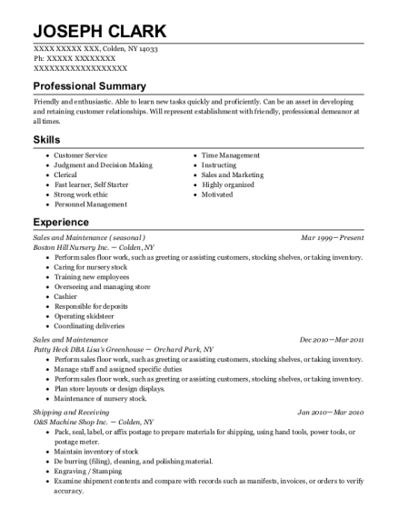 Sales and Maintenance resume template New York