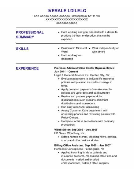 Video Editor resume example New York