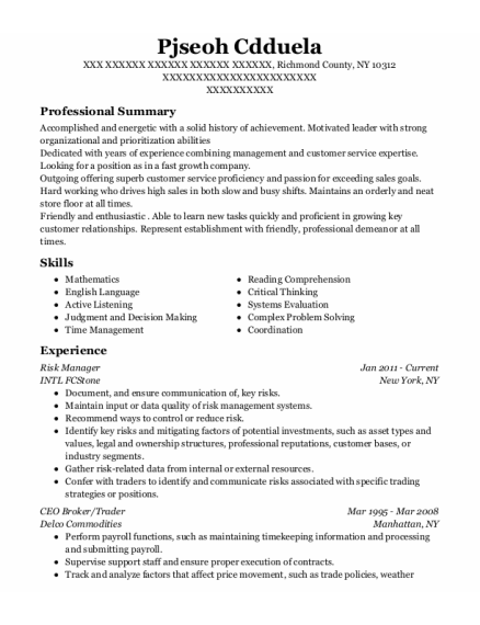 Risk Manager resume example New York
