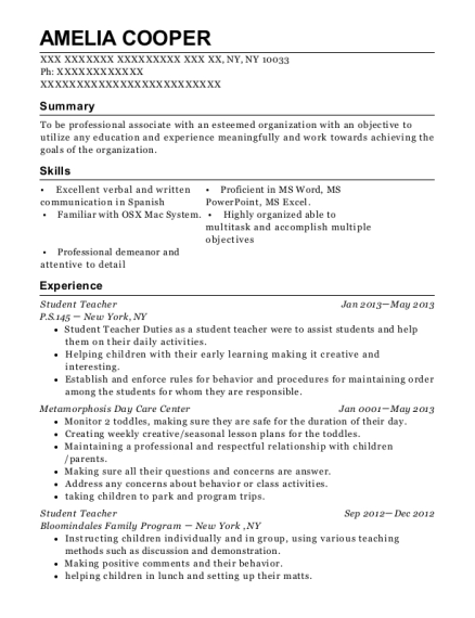Student Teacher resume format New York