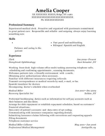 Clerk resume template New York