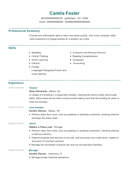 Cleaner resume sample New York