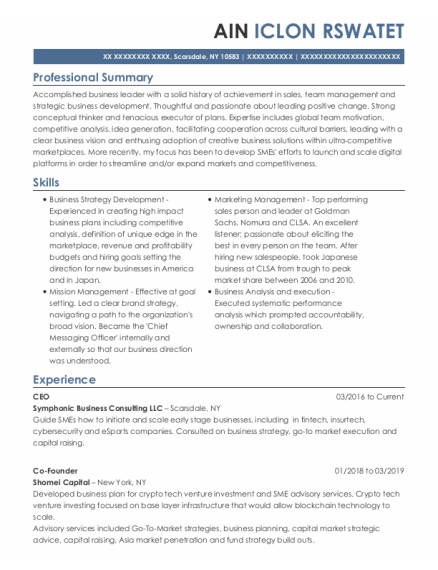 Managing Director resume example New York