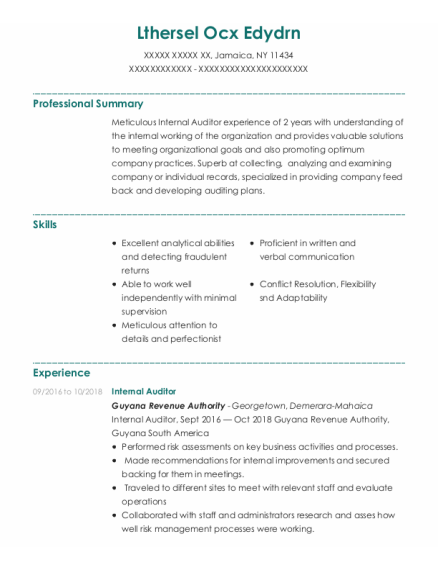 Internal Auditor resume format New York