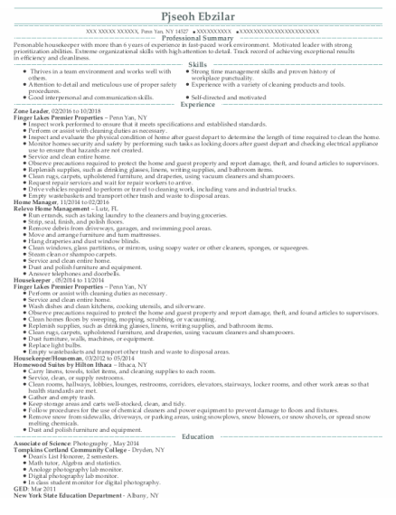 Zone Leader resume sample New York