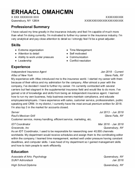 Independent Insurance Agent resume sample New York