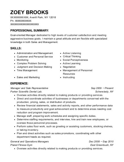 Manager and Sale Representative resume template New York