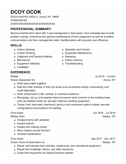 welder resume template New York
