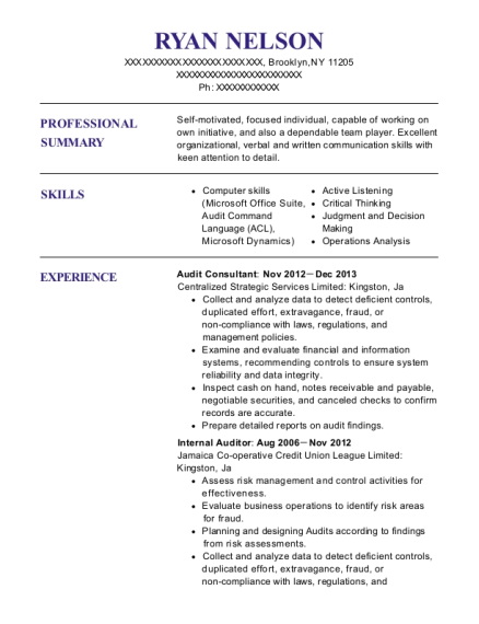 Audit Consultant resume format New York