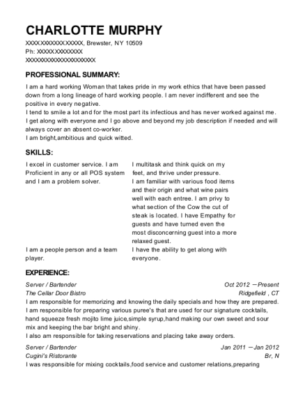 Server resume template New York
