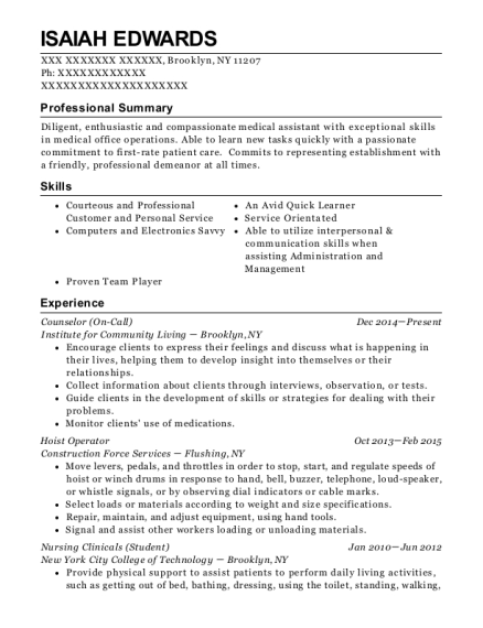 Counselor resume sample New York