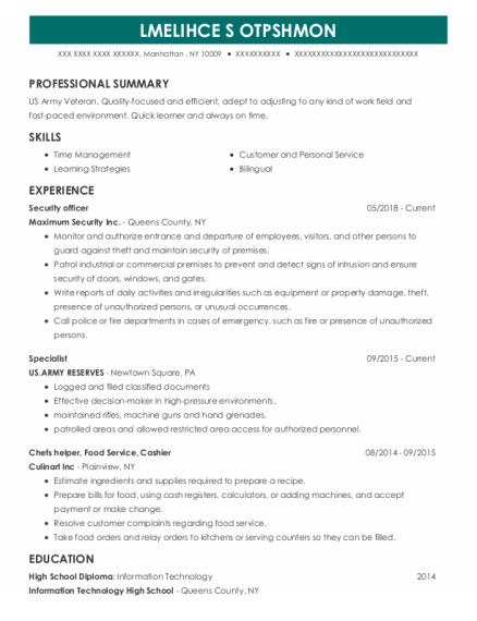 Security officer resume format New York