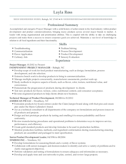 Project Manager resume template North Carolina