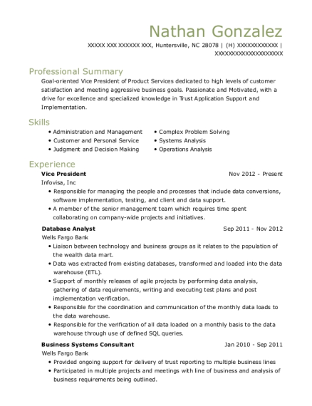 Vice President resume example North Carolina