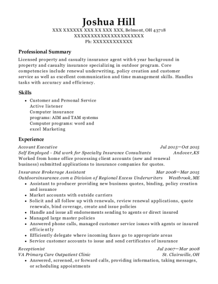 Account Executive resume format Ohio