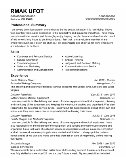 Route Delivery Driver resume example Ohio