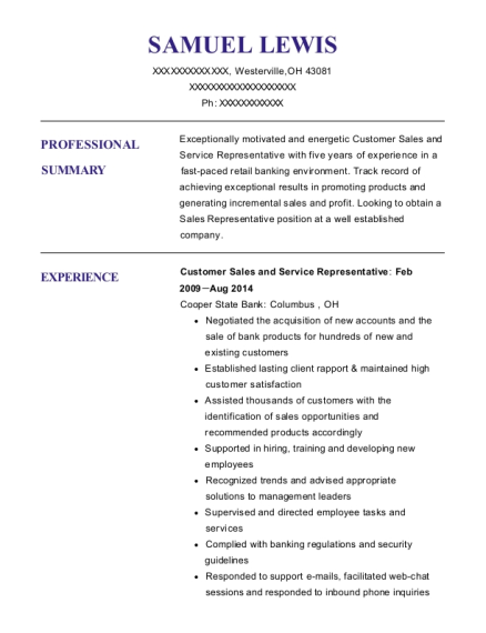 Customer Sales and Service Representative resume sample Ohio