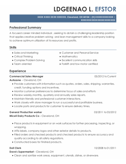 Commercial Sales Manager resume format Ohio