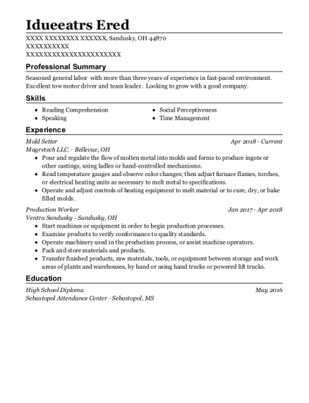 Mold Setter resume sample Ohio
