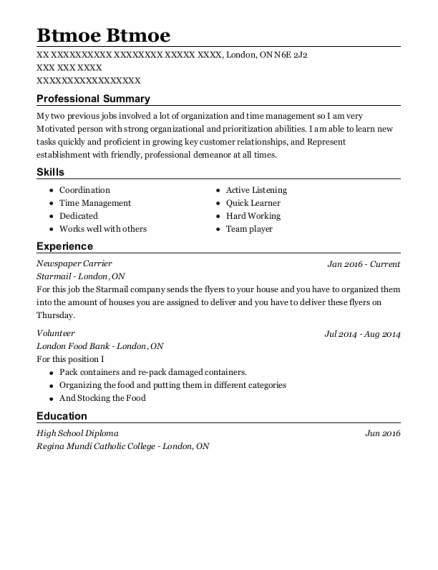 Newspaper Carrier resume example ON