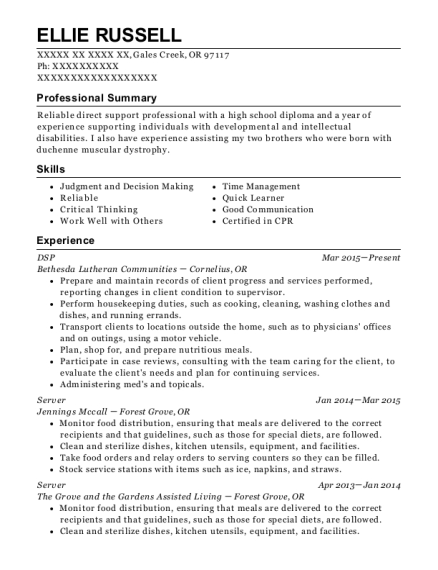 DSP resume sample Oregon