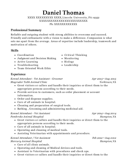 Kennel Attendant Vet Assistant Groomer resume template Pennsylvania