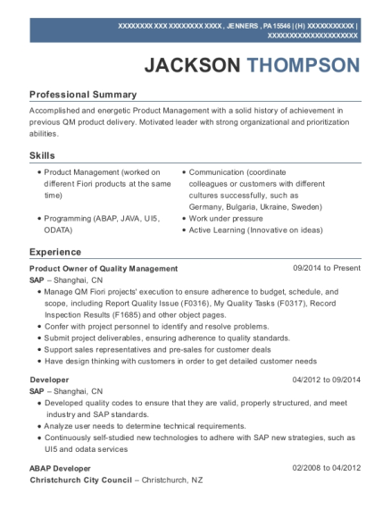 amplify product owner resume sample