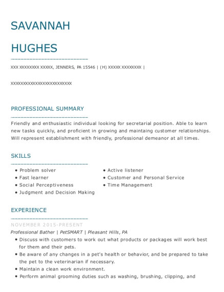 Professional Bather resume format Pennsylvania