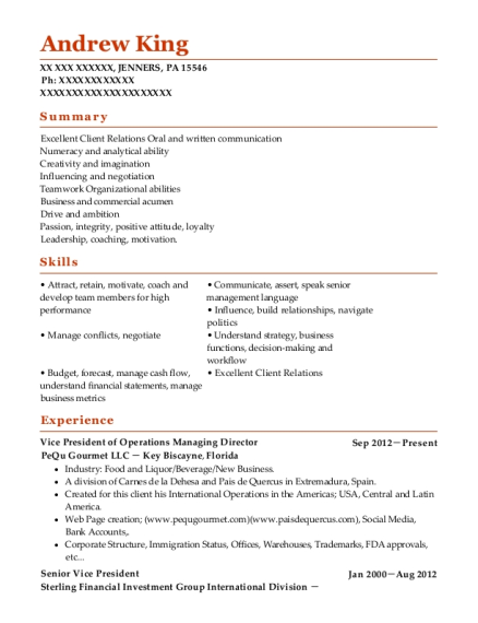 Vice President of Operations Managing Director resume format Pennsylvania