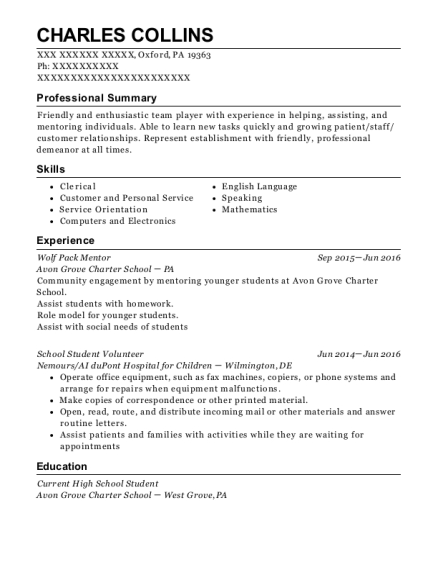 Wolf Pack Mentor resume example Pennsylvania