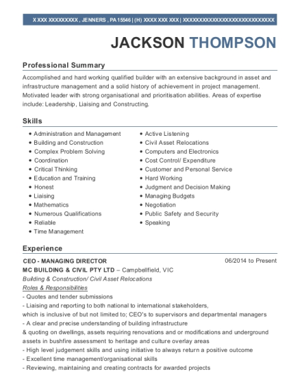 CEO MANAGING DIRECTOR resume example Pennsylvania
