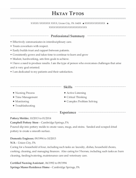 Domestic Engineer resume format Pennsylvania