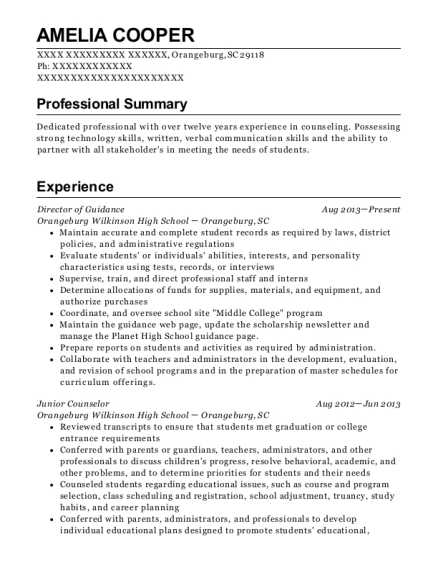 Director of Guidance resume sample South Carolina