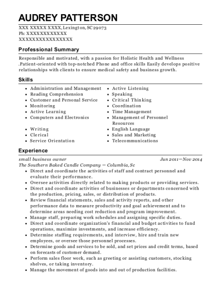 Small Business Owner resume format South Carolina