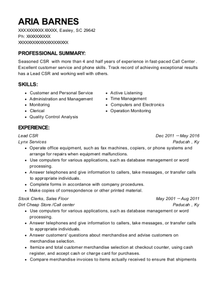 Lead CSR resume format South Carolina