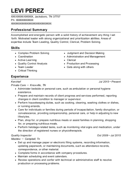 Kerchief resume format Tennessee