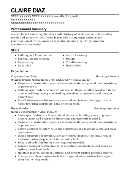 Carpenter Lead Man resume format Tennessee