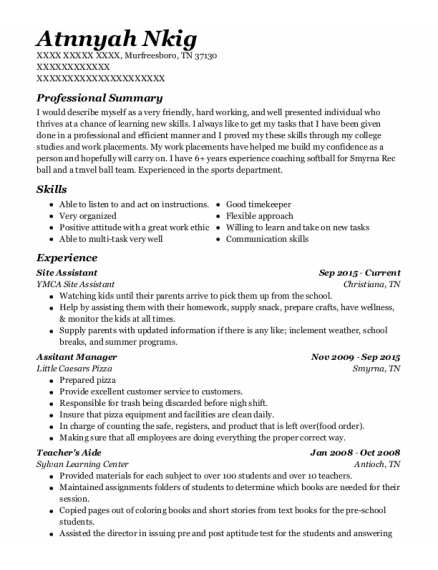 Site Assistant resume sample Tennessee