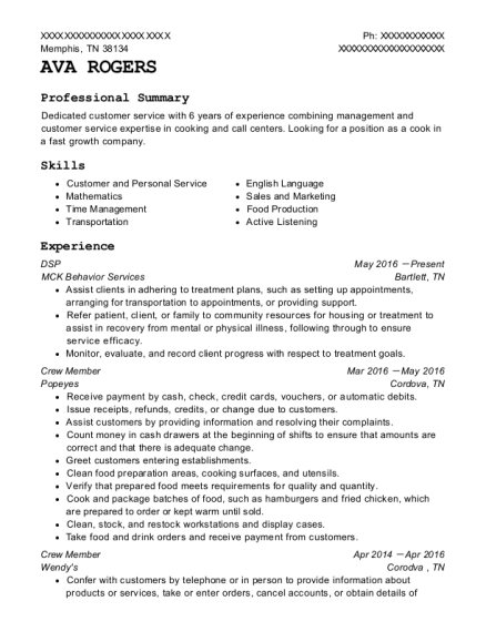DSP resume sample Tennessee