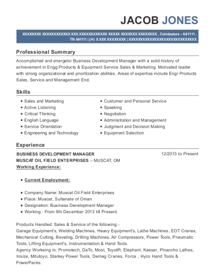 Business Development Manager resume example Tennessee