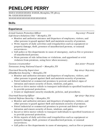 Armed Custom Protection Officer resume template Tennessee